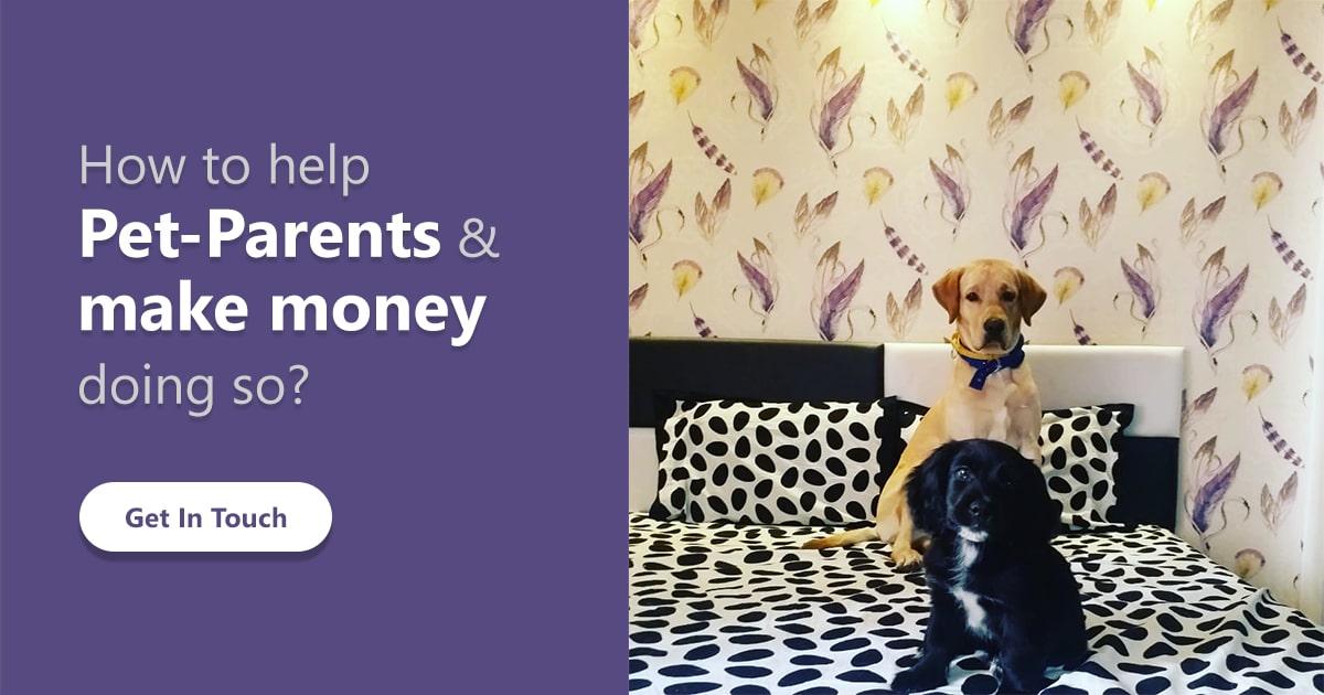 Start a Pet Store Online