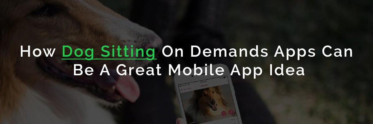 On Demand Dog Walking App