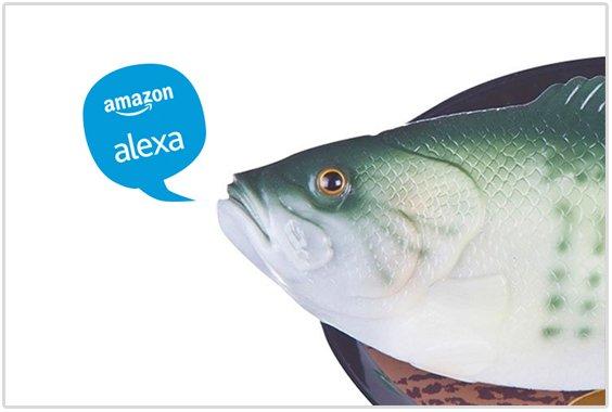 How Alexa Gadgets SDK Is