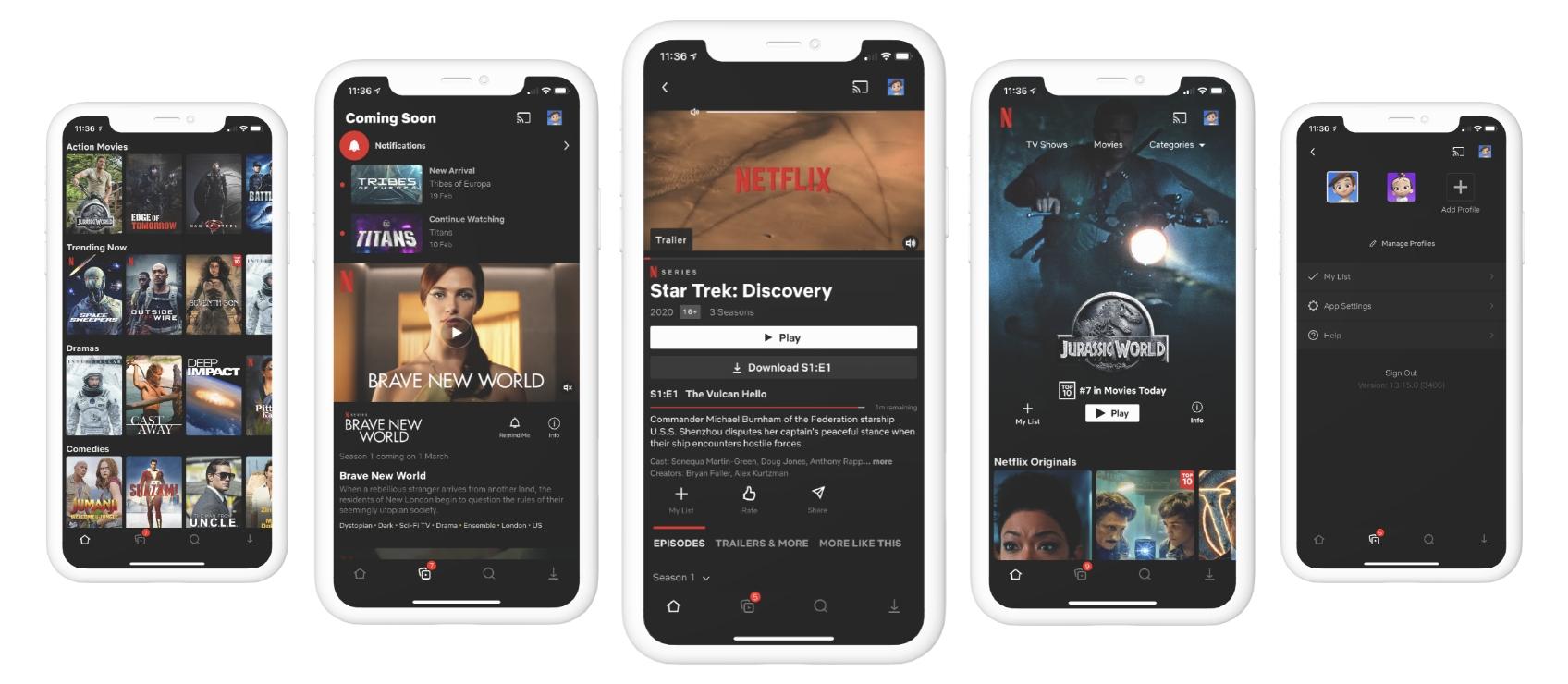 Screenshots of the Netflix App