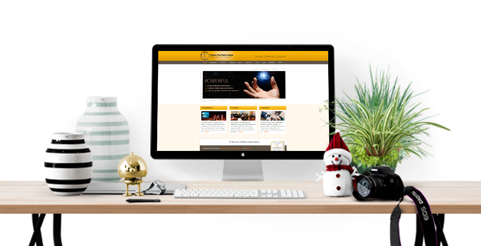 consulting business website development
