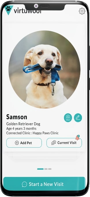 Veterinary Telemedicine App Screen 2