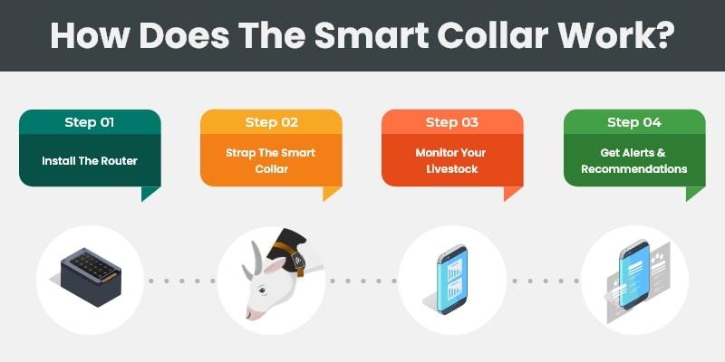 Working of IoT Smart Collar For Livestock