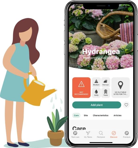 top planta app